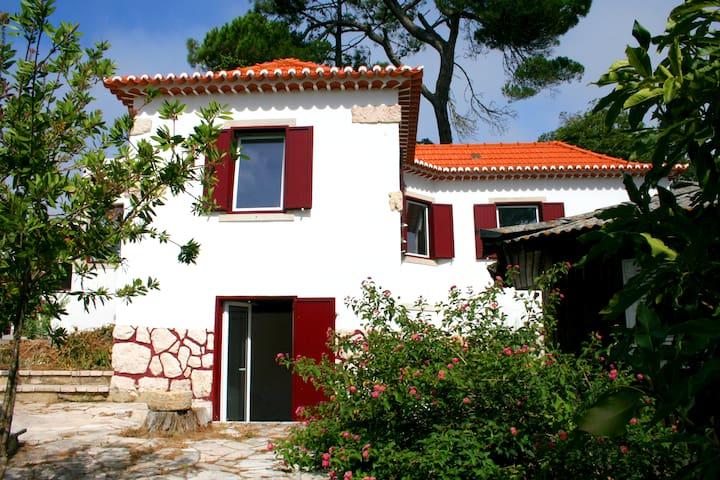 FOREST HOUSE Sra. Da Paz, Lisboa – Sintra