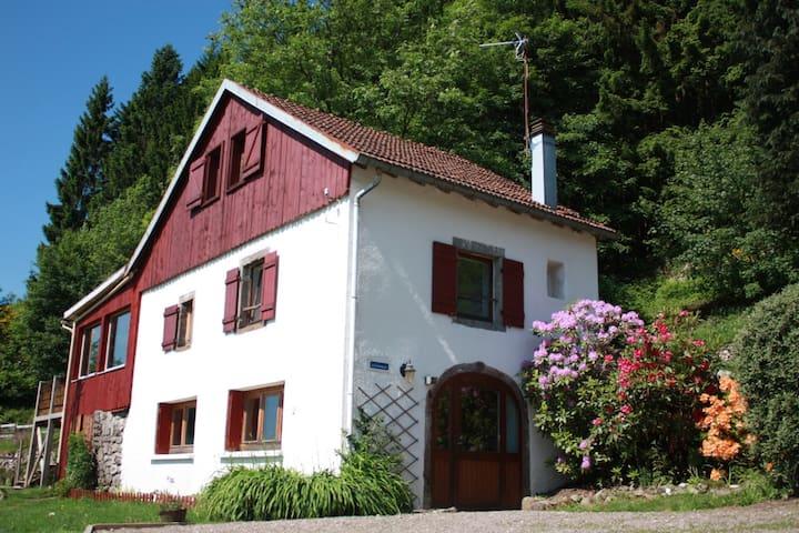 L'Annexe du Haut Pré - Rupt-sur-Moselle - House