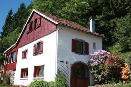L'Annexe du Haut Pré - Rupt-sur-Moselle - Casa