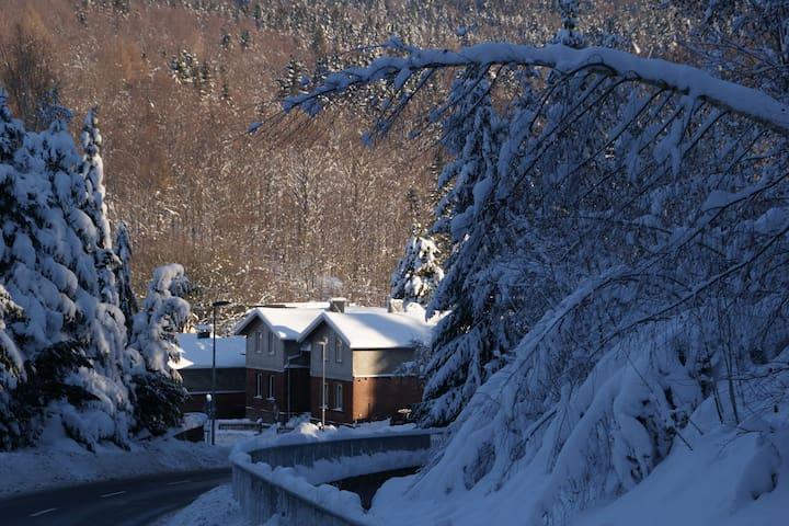 Modern Holiday home in Rechenberg-Bienenmühle near Ski Area