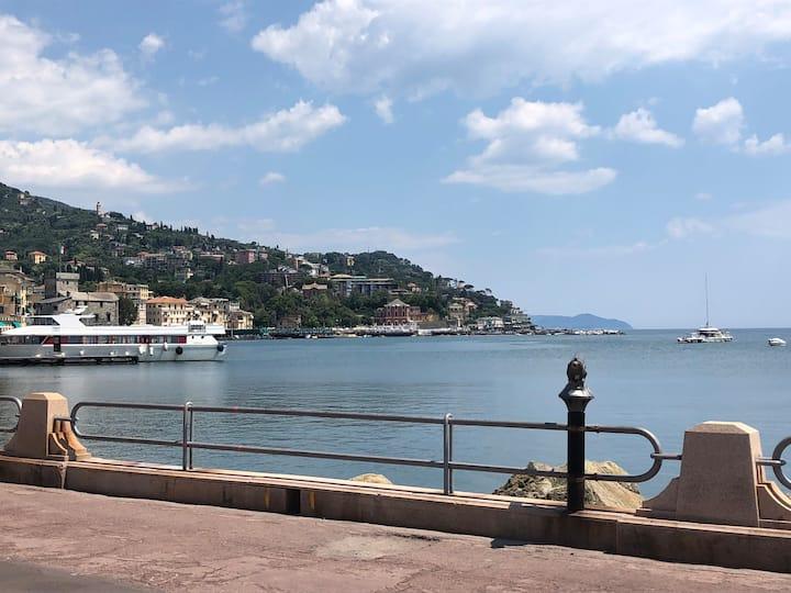Appartamento vista Rapallo (CITRA 010046-LT-0480)