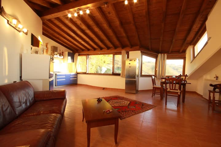 SPLENDID VILLA15KM FROM ROME WITH WIFI25MEGAFIBER