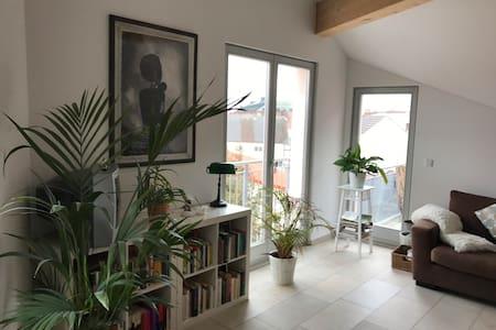 Exklusive DG-Wohnung in Ingolstadts Stadtmitte - Ingolstadt - Daire