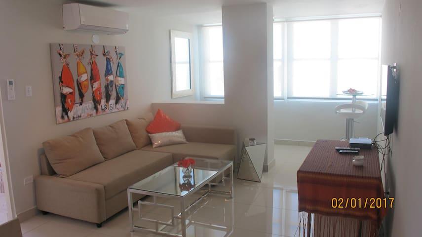 Modern, bright and efficent Apartment - San Juan - Departamento
