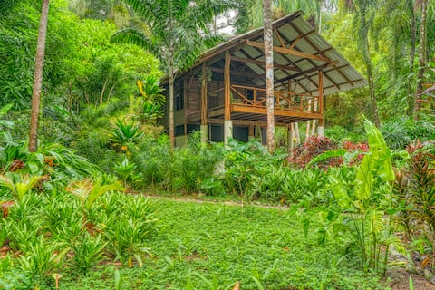 Glamping, forêt tropicale et surf Cabo Matapalo