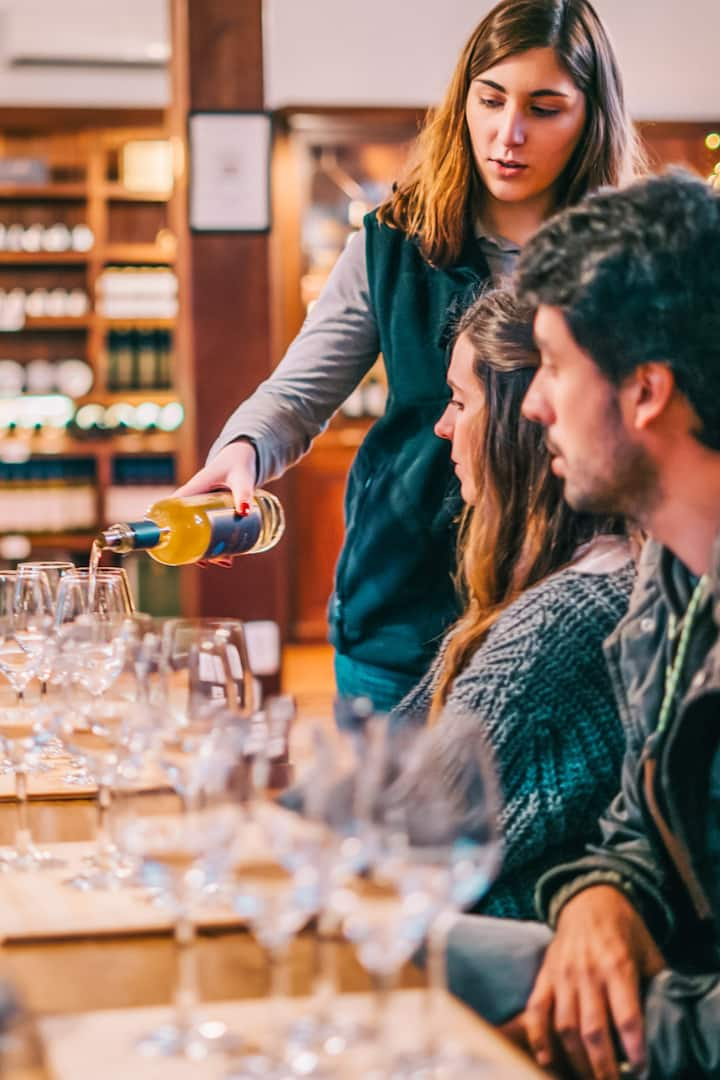 Wine tour - the best Wines from Alentejo