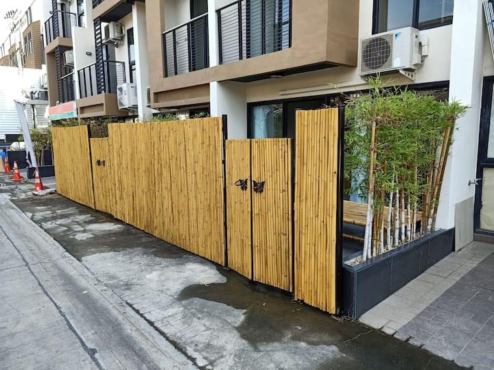 bamboo garden, 竹林93三