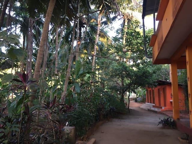 Shivaprasad Garden View Room 3