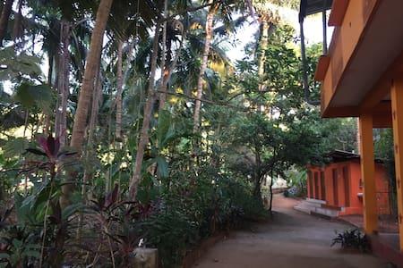 Shivaprasad Garden View Room 4