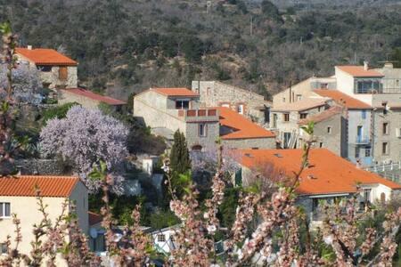 Vue Panoramique et Terrasse au Sud -toutes saisons