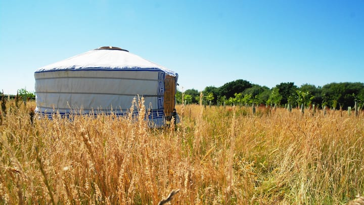 Back to Nature Yurt Getaway