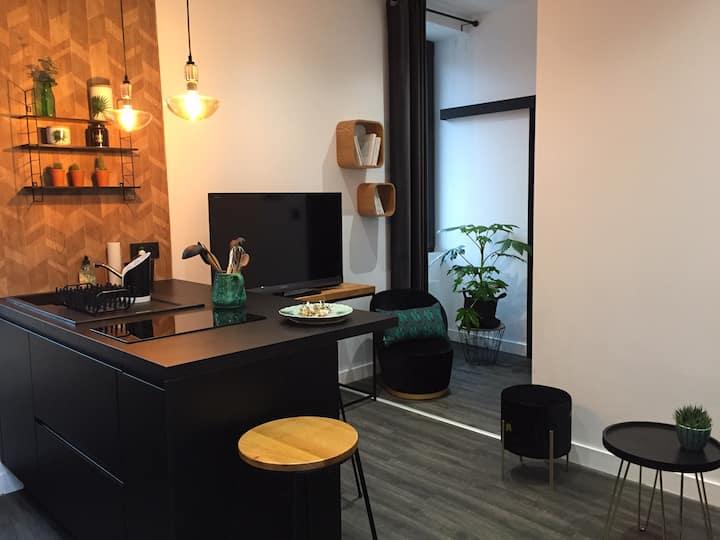 Le 22 - Appartement 35 m2 avec jardin à Roanne