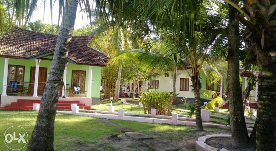 lake and paddy - Alappuzha - Bed & Breakfast