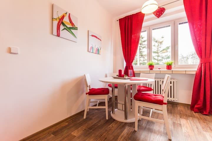 CENTRE Prague apartment with beautiful surrounding - Prag - Daire