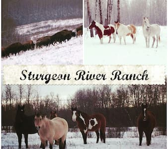 Sturgeon River Guest Ranch