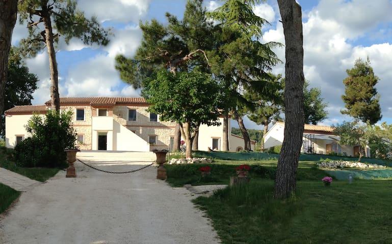 Tra il verde a due passi dal blu - Ancona - Apartament