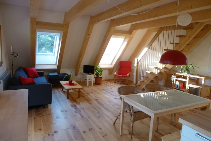 Cozy apartment at the heart of the Black Forest!