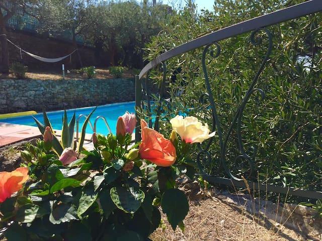 Villa Magnolia con piscina 010047-LT-0081