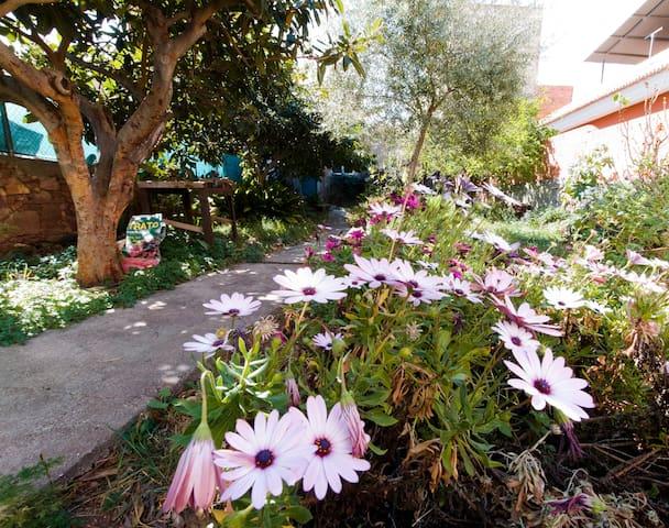Vivienda completa en Faura. Wifi, garaje y jardín
