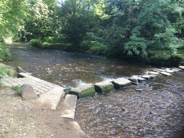 The stepping stones over the river Tame in the centre of  Uppermill