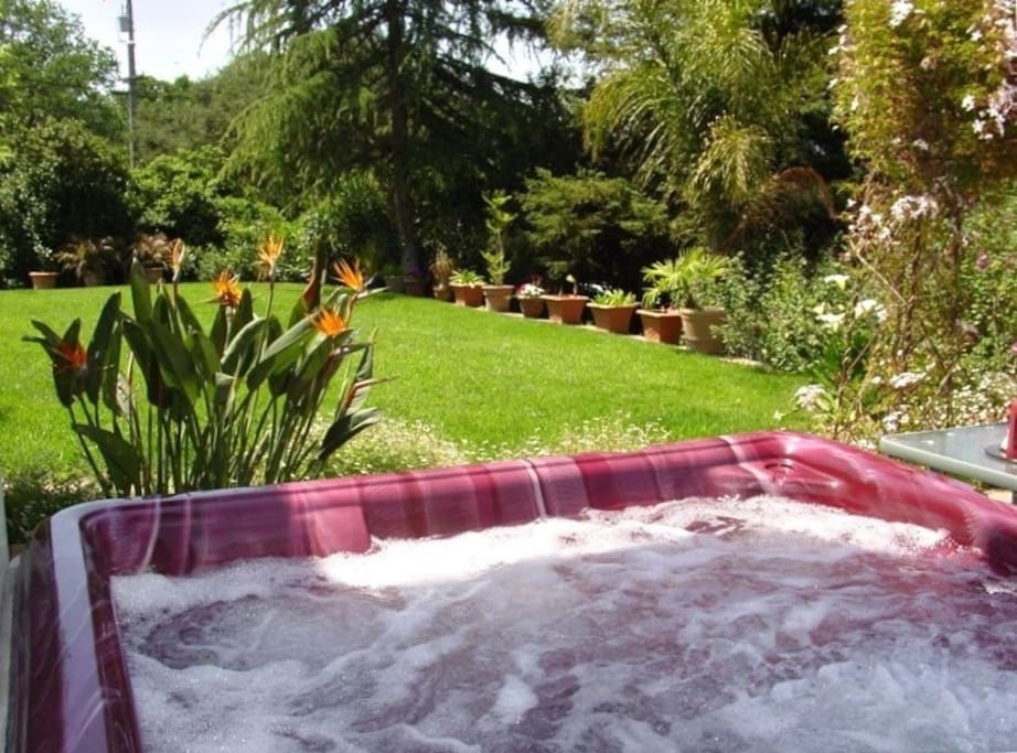 Jacuzzi and lawn garden area