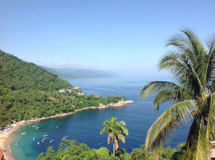 Majestic Mismaloya.  Condo La Galera awaits you.