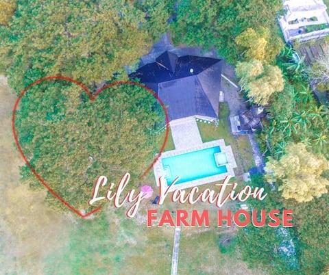Lily, Vacation Farm House, Jalajala Rizal