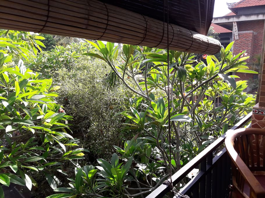 Each room has a terrace area to enjoy breakfast. Two rooms are upstairs and two are downstairs.