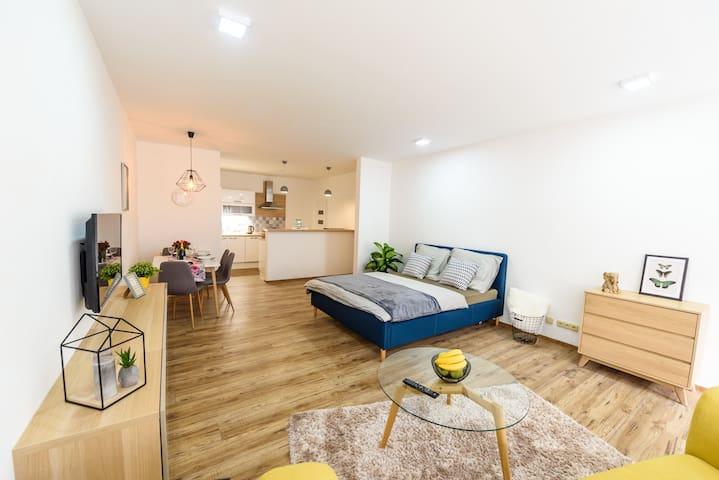 New luxus studio in Tábor + free parking!
