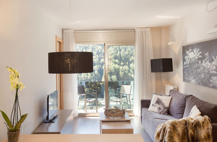 One-bedroom apartment with mountain views. STJ1