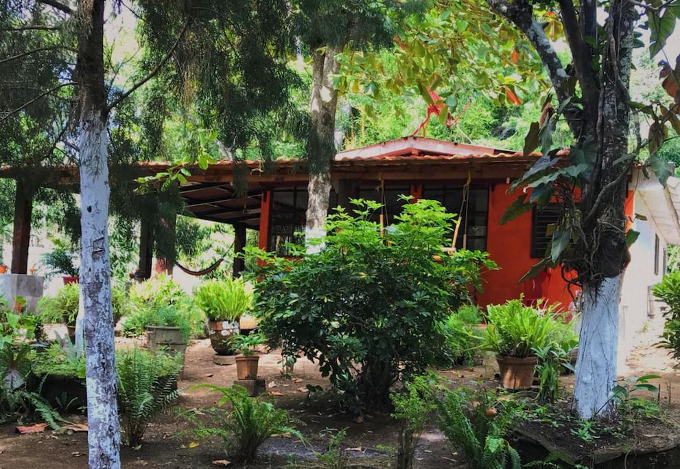 Spacious and charming cottage among nature just a few steps from the city.