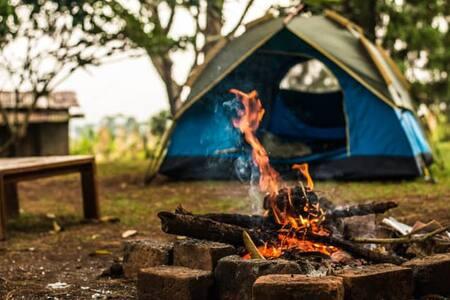 Camp RIMA #2