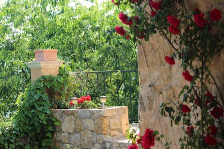 House and garden with view - Fayence