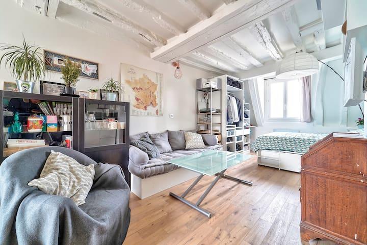 Beautiful Studio Right In The Heart Of Paris