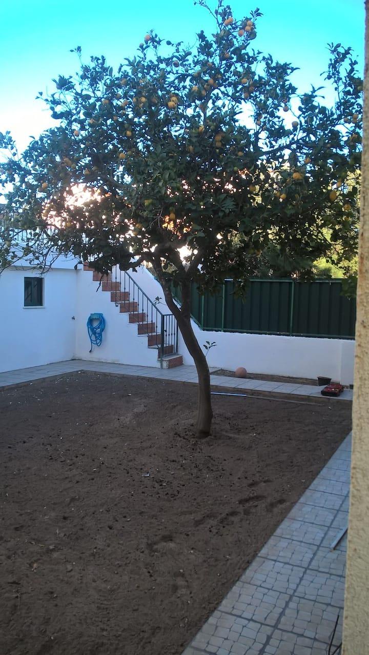 Casa do Limoeiro - Campo, Praia e as Cidades