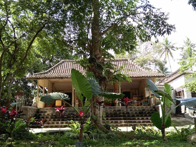 Heritage Javanese 150yo wood house,farm, 1-2pax