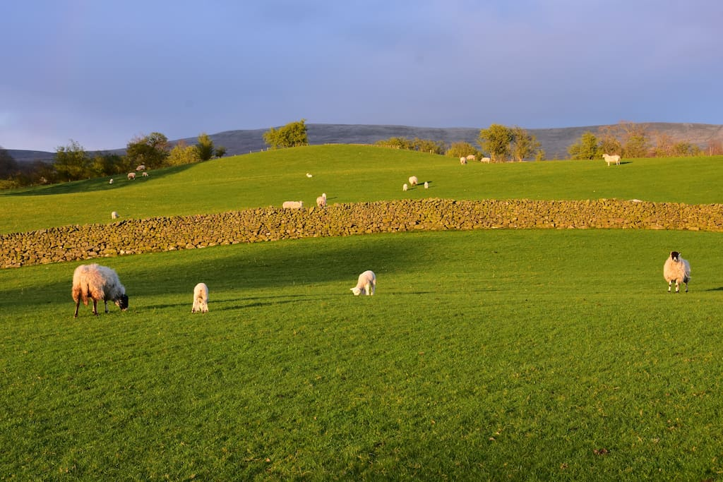 Surrounded by stunning views of the Yorkshire Dales and Howgill Fells wishing walking distance of Sedbergh market town