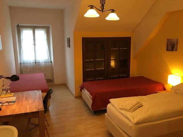 Hotelzimmer im Herzen von Aarburg (Nr. 5)