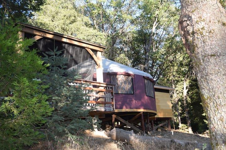 Find your Calm - Kestrel Yurt - Baileys on Palomar