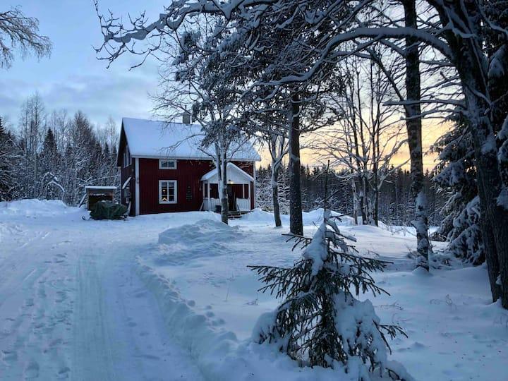 Haus im Fjäll mit schöner Aussicht