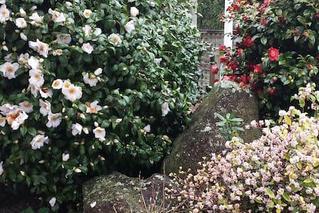 Taupahi Garden Apartment - Turangi - Huoneisto