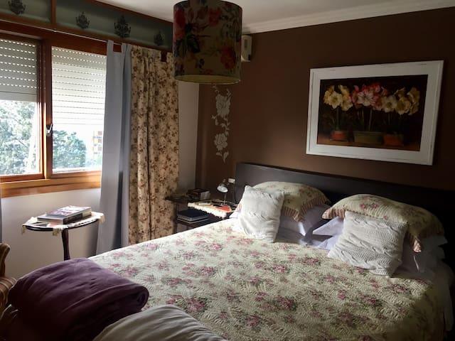 Tapetes lindos, higienizados com vapor quente após cada visita e chão em bela madeira grossa verdadeira.