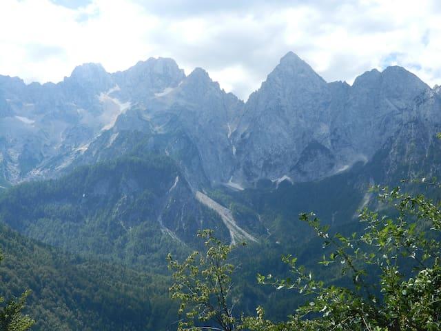 DOM NA GLAVI - Gozd Martuljek - Gjestehus