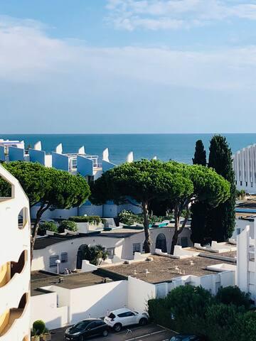 La Grande Motte / Studio  with beautiful sea view