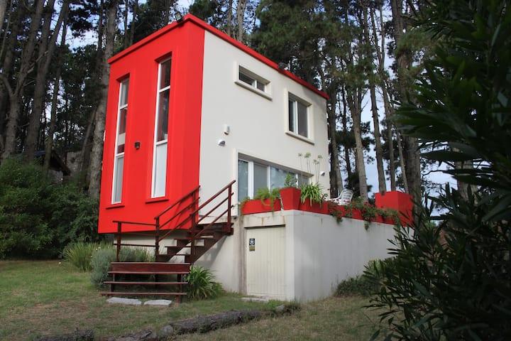 Espectacular Casa en el bosque de Mar Azul!!!