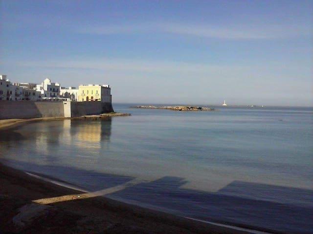 Casa vacanza a pochi minuti dalle spiagge - Aradeo - Apartament