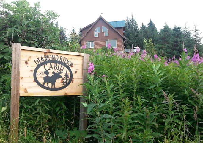 Diamond Ridge Cabin sign at the driveway entrance