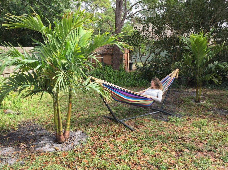 Hammock between our new palm trees in the back yard!