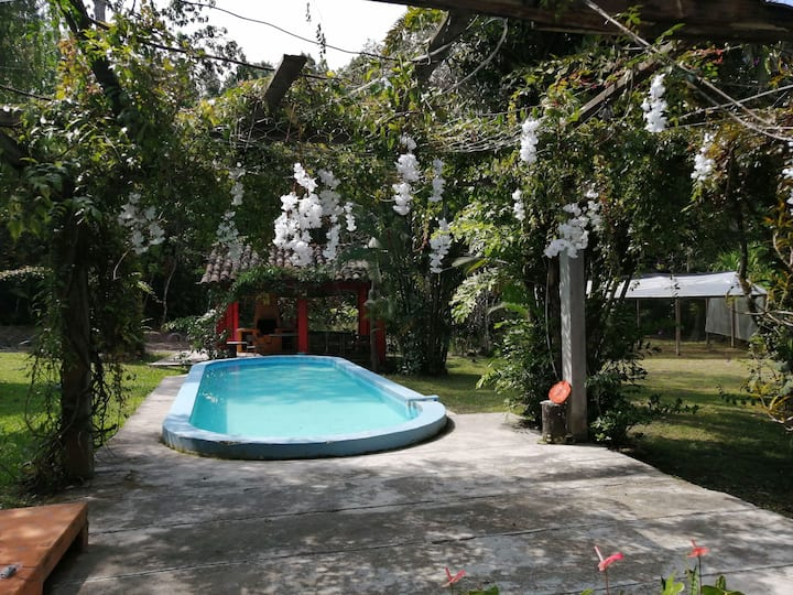 Habitación Las Orquídeas casa / campo