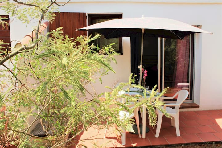 Grand Studio & joli jardin bio 200m plage de Calvi